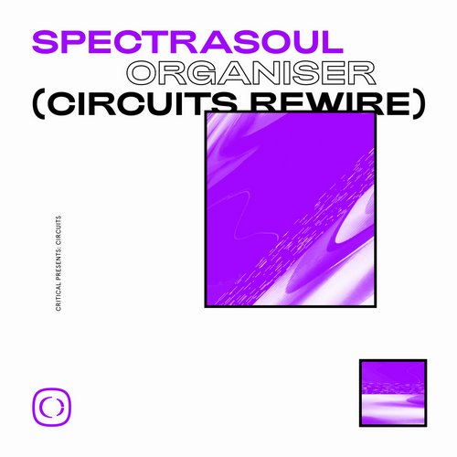 SpectraSoul - Organiser (Circuits Rewire) [CRIT116]